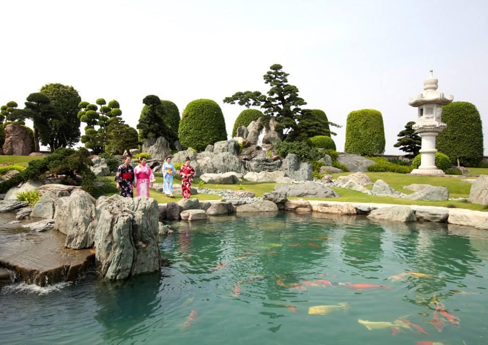 hồ cá koi tại công viên Nhật Bản